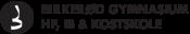 Birkerød Gymnasium logo